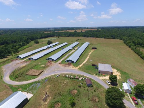 4 House Broiler Poultry Farm : Sylvania : DeKalb County : Alabama