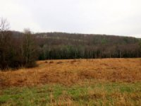 Luxury Home On 106 Acres : Unityville : Lycoming County : Pennsylvania