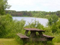 12.5 Acres On Hodges Lake : Evart : Mecosta County : Michigan