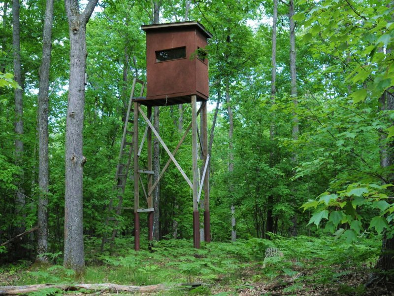 Huge 560 Acre Hunting Property : West Branch : Ogemaw County : Michigan