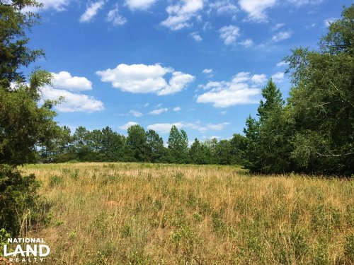 Woodland With Pasture On Charlies C : Lowndesville : Abbeville County : South Carolina