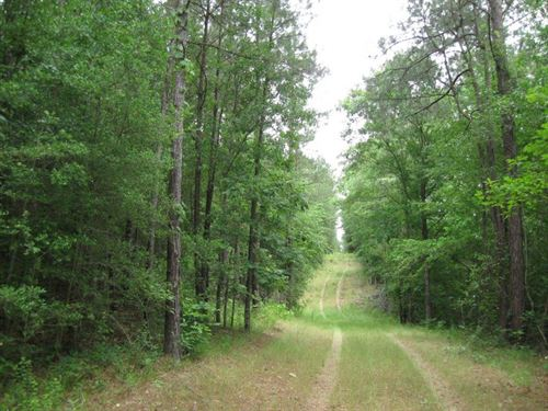 99 Acres Morris O'qinn Swan Road : Tylertown : Walthall County : Mississippi