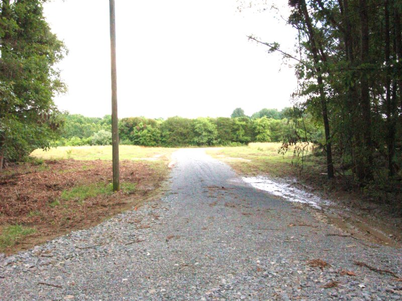Lovely 13.31 Acre Lot : Doswell : Hanover County : Virginia