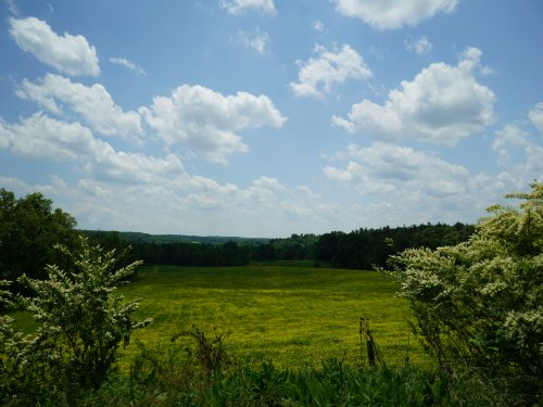 80 Acres - Can Divide : Crossville : Cumberland County : Tennessee