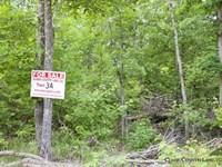 Thunder Mountain Ranch Tract 34 : Birch Tree : Shannon County : Missouri