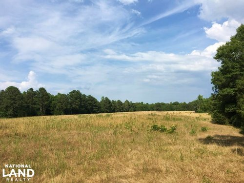 Farm Land With Abundant Wildlife : Lowndesville : Abbeville County : South Carolina