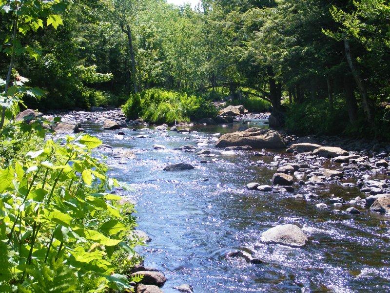 Camp Ozonia : Waverly : Franklin County : New York