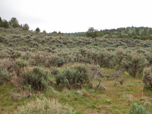 California, Lassen County, 20.56 Ac : Susanville : Lassen County : California
