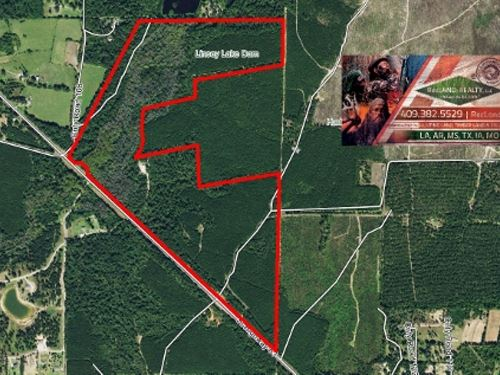 168.15 Ac, Recreational Tract : Jasper : Texas