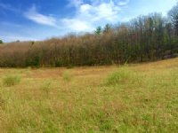 23+/- Acres, Land, Millville Area : Millville : Columbia County : Pennsylvania