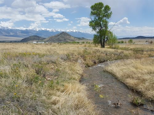 235603 - Great Property For Horses : Villa Grove : Saguache County : Colorado