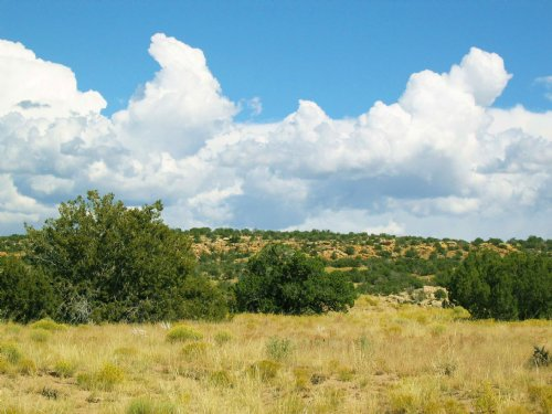 Beautiful High Country Ranch : Saint Johns : Apache County : Arizona
