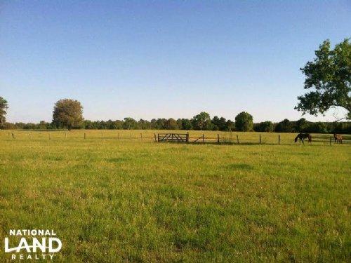 Kabar Ranch : Nicholls : Ware County : Georgia