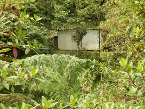 34 Ac Jungle Tract / Old Cabin : Orosi Valley : Costa Rica