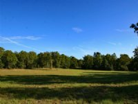 163 Acres For Sale