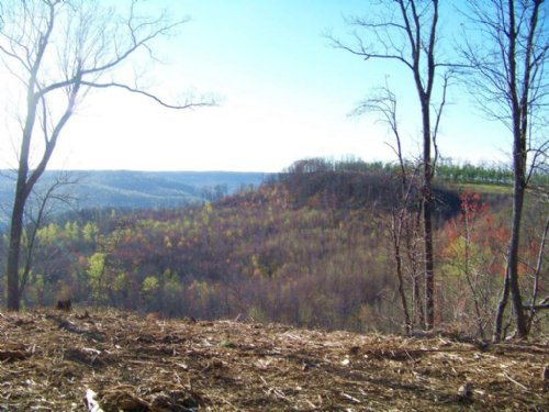 52.54+/-acres Panoramic Views : South Pittsburg : Marion County : Tennessee