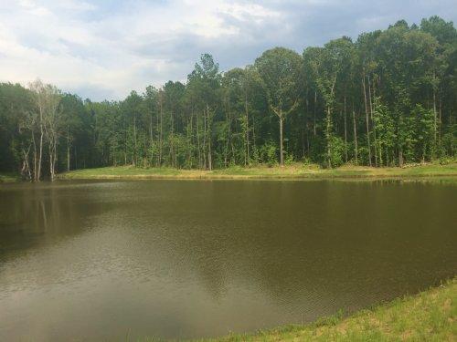 Estate Property Private Pond : Bolingbroke : Monroe County : Georgia