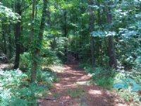 42.19 +/- Wooded Acres, Bank Owned : Douglasville : Douglas County : Georgia