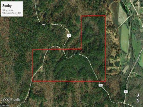 Scoby 160 Acres : Coffeeville : Yalobusha County : Mississippi