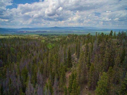 Bear Camp : Tie Siding : Albany County : Wyoming
