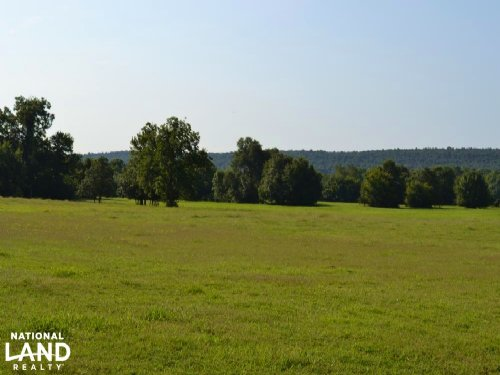 300 Acre Cattle & Hay Farm : Caulksville : Logan County : Arkansas