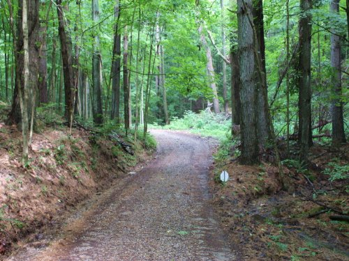 Stage Rd Tract 4 - 50 Acres : Sugar Grove : Hocking County : Ohio