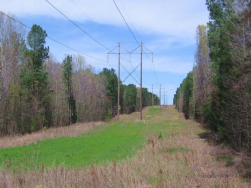 12± Acres : Pickens : Madison County : Mississippi