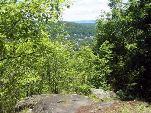 West Mountain Forest : Whitehall : Washington County : New York