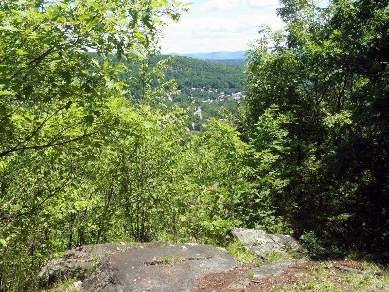 West Mountain Forest : Whitehall : Washington County : New York