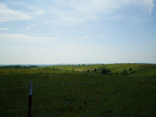 80ac With Views - Farm Ready : Grandview : Rhea County : Tennessee