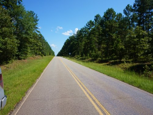 Shirey Tract 110 Acres : Tennille : Washington County : Georgia