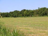 Ash Creek Ranch