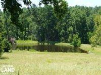 Estate/ranch Property