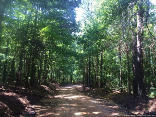 138+/- Ac Timber Tract : Monticello : Lawrence County : Mississippi