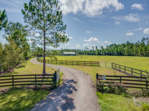 Forest Acres- 20.29 Acres : Jacksonville : Duval County : Florida