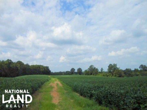 Wolf Pond Road Farmland, Timber, Hu : Monroe : Union County : North Carolina