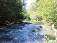 Big Water And History : Thomaston : Upson County : Georgia