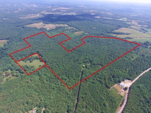 140.65 Acres - Rance Foster Road : Bowdon : Carroll County : Georgia