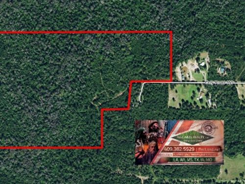 92 Ac Hardwood Tract With Excellen : Jasper : Texas