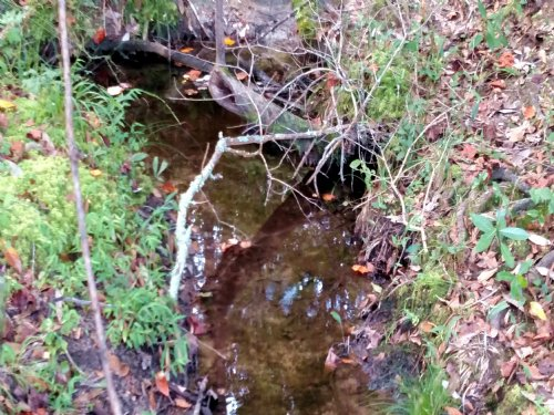 112 Acres Hunting Tract With Creek : Knoxville : Crawford County : Georgia