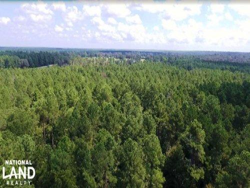Huntsville Unrestricted Land For H : Huntsville : Walker County : Texas