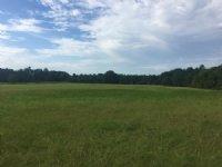 Live Oak Plantation : Luverne : Crenshaw County : Alabama