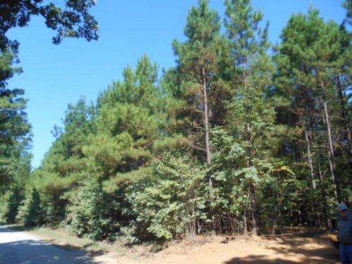 Davis Lowgrounds : Keysville : Lunenburg County : Virginia