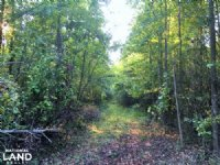 Hwy 321 Hunting Land : Blackstock : Chester County : South Carolina
