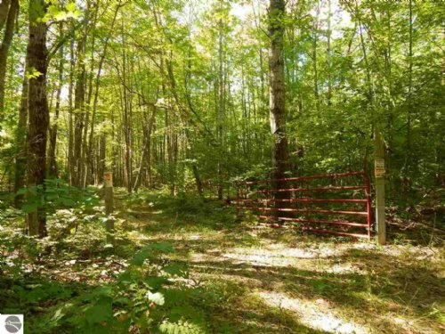 23.7 Acres Next To State Land : Mikado : Iosco County : Michigan