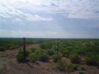 80 Acre Ranch, Near Pecos
