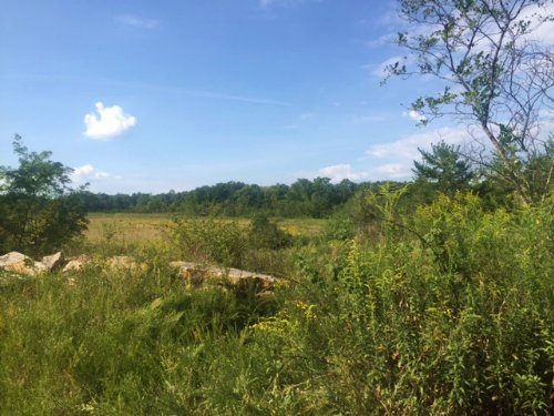 107+/-acres Prime Hunting Property : Chattanooga : Marion County : Tennessee