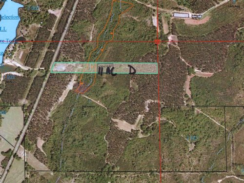 11 Acres With A Great Homesite : Banks : Pike County : Alabama
