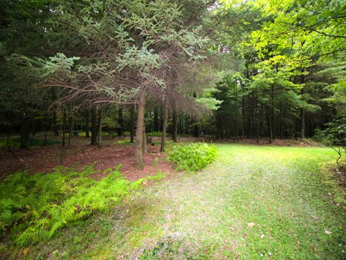 53+/- Acres, Home In Bloomsburg : Bloomsburg : Columbia County : Pennsylvania