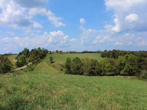 Rainbow Lake Rd - 84 Acres : Athens : Ohio